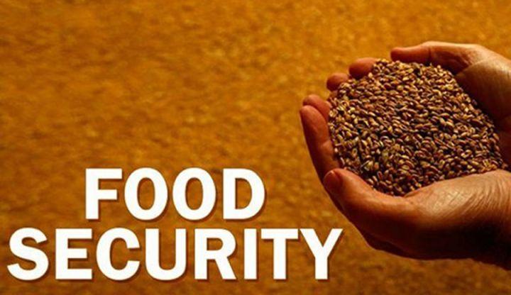 Food-1-edit.jpg